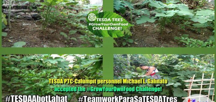 TESDA TRES #GrowYourOwnFood Challenge